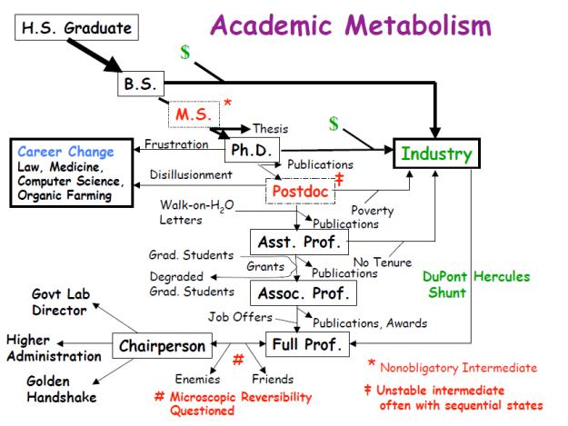 academetabolism